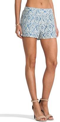 BB Dakota Lace Dress Shorts