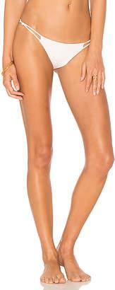 Tavik Asher Bikini Bottom
