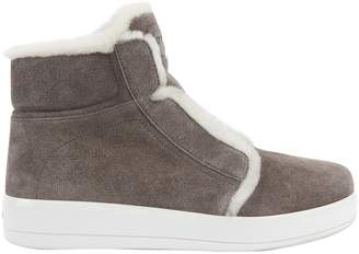 Grey Suede Trainers