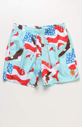 "ambsn 'Merica 15"" Swim Trunks"
