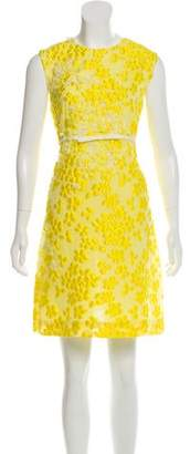 Giambattista Valli A-Line Embroidered Dress