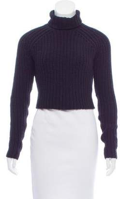 Alexander Wang Cropped Turtleneck Sweater