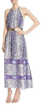 Ramy Brook Norina Sleeveless Snake-Print Silk Maxi Dress