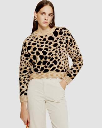 PETITE Leopard Print Cropped Jumper