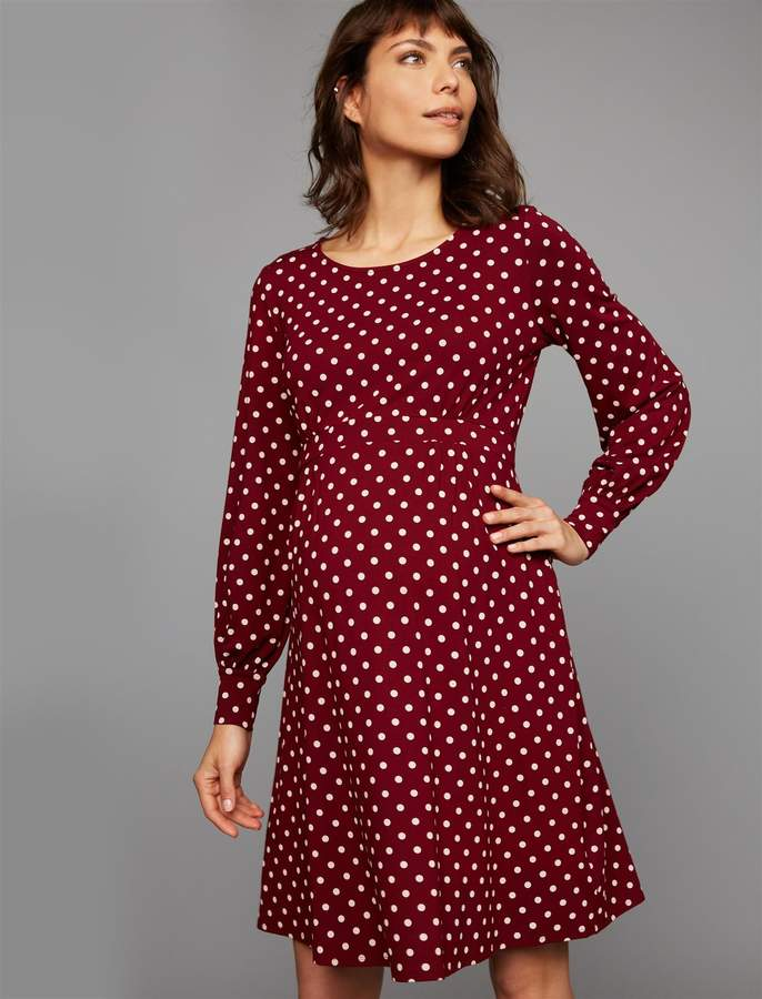 Pea Collection Isabella Oliver Lydia Sleeve Detail Maternity Dress