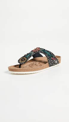 Sam Edelman Olivie 3 Sandals