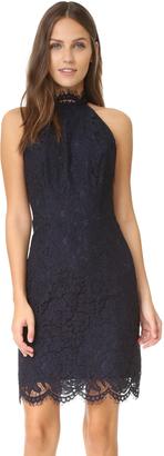 BB Dakota Cara High Neck Lace Dress $105 thestylecure.com