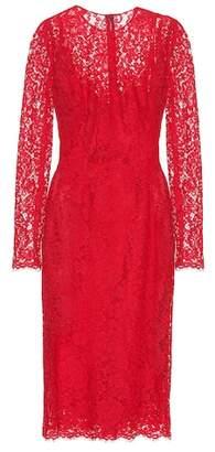 Dolce & Gabbana Cotton-blend lace midi dress