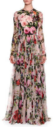 Dolce & Gabbana Long-Sleeve Rose-Print Gown, Pale Pink/Multi $7,995 thestylecure.com