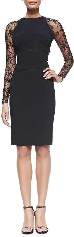 Elie Saab Sheath Dress with Long Lace Sleeves