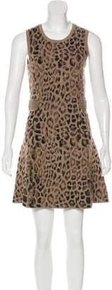 Skaist-Taylor Wool Printed Dress