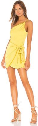 Lovers + Friends Karen Mini Dress