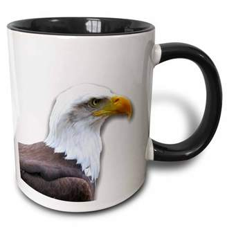 3dRose Bald Eagle bird of prey profile on white - eagle scout gifts - wild animal wildlife photography - Two Tone Black Mug, 11-ounce