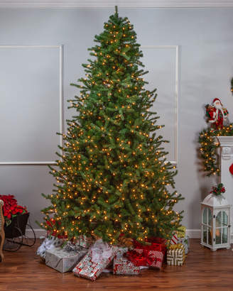 Sterling Tree Company 9Ft Layered Norfolk Pine Pre-Lit Tree
