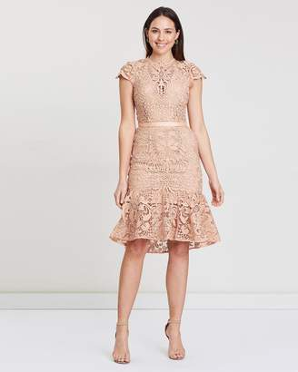 Baroque Lace Dress