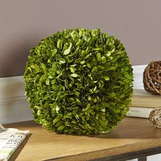 Birch Lane Preserved Boxwood Ball Decor
