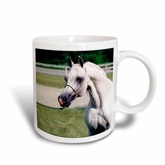 3dRose Head of Arab Horse, Ceramic Mug, 11-ounce