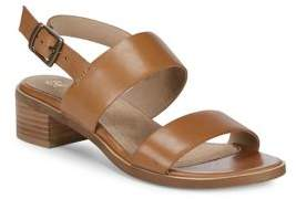 Seychelles Gallivant Leather Sandals