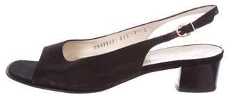 Salvatore Ferragamo Low-Heel Ankle Strap Sandals
