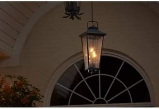 Co Darby Home Fraser 4-Light Lantern Pendant