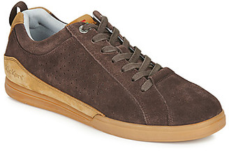 TAMPA men's Shoes (Trainers) in Brown
