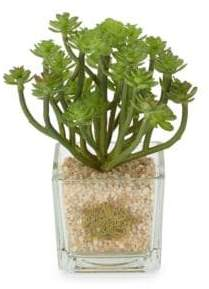Potted Artificial Succulent