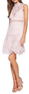 Bardot Elise A-Line Lace Dress