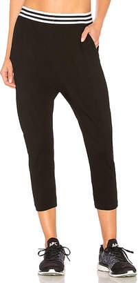 Fenix All Drop Crotch Pant