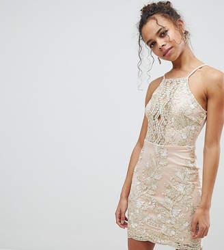 Parisian Petite Embroidered Metallic Dress