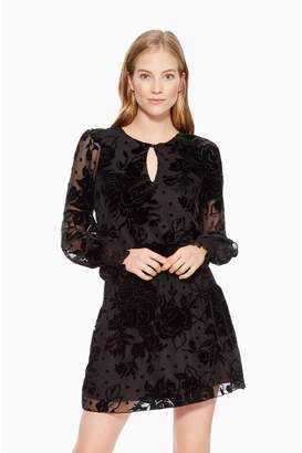 Parker Mindy Floral Dress