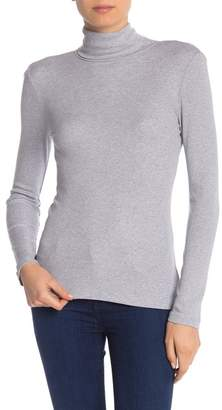 Splendid Rib Knit Turtleneck Sweater