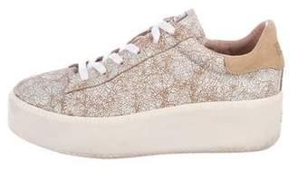 Ash Suede Flatform Sneakers