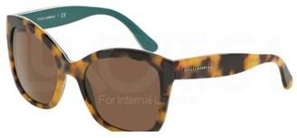Dolce & Gabbana 289173 Tortoise 4240 Sunglasses Lens Category 3