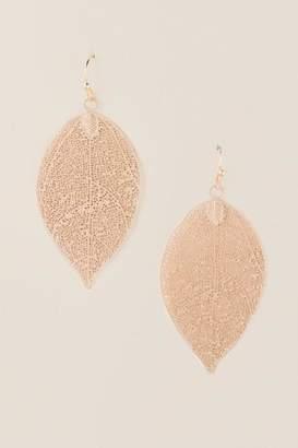 francesca's Aalihjah Filigree Leaf Drop Earrings in Gold - Gold