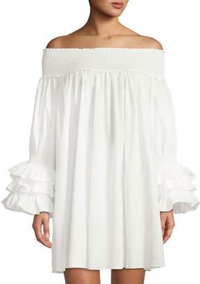 Gracia Off-The-Shoulder Ruffle-Sleeve Mini Dress