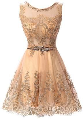Dearta Women's A-Line Floor-Length Appliques Prom Party Dresses Light Blue US
