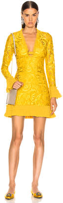 Alexis Nuray Dress in Gold Lace   FWRD