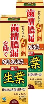 【まとめ買い】ひきしめ生葉(しょうよう) 歯槽膿漏を防ぐ 薬用ハミガキ ハーブミント味 100g×2個 (リーフレット付き) 【医薬部外品】
