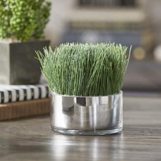 Mercury Row Desktop Foliage Grass in Cylinder Pot