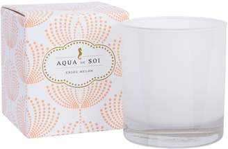 Aqua De SOI Anjou Melon Boxed Candle (11OZ)