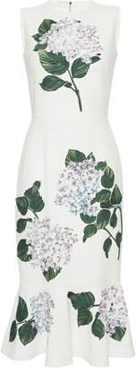 Dolce & Gabbana Floral-Appliqued Dress $8,195 thestylecure.com