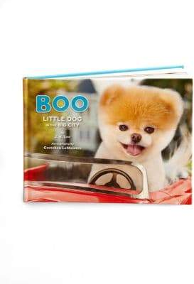 Chronicle Books Boo: Little Dog in the Big City