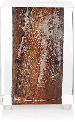 Bleu Nature Nilleq Wood-Inset Acrylic Glass Objet D'Art