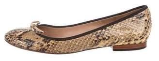 Celine Snakeskin Round-Toe Flats