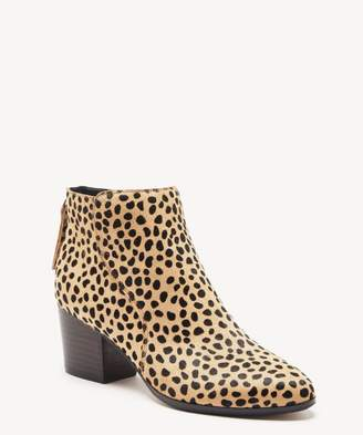 Sole Society River Ankle Bootie
