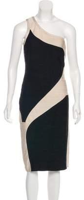 Herve Leger One-Shoulder Knit Dress
