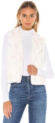 BB Dakota Aint It Fuzzy Faux Fur Vest