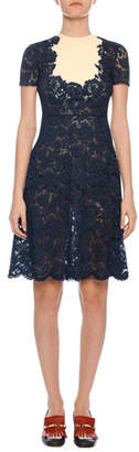 Valentino Short-Sleeve Heavy-Lace A-Line Dress w/ Crepe Inset