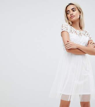 Vero Moda Petite Lace Prom Dress