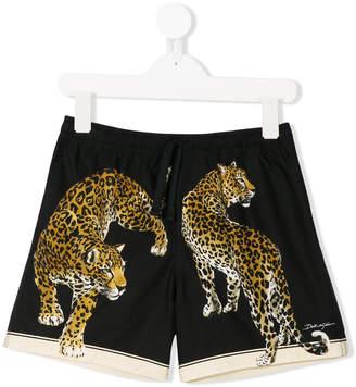 Dolce & Gabbana leopard shorts